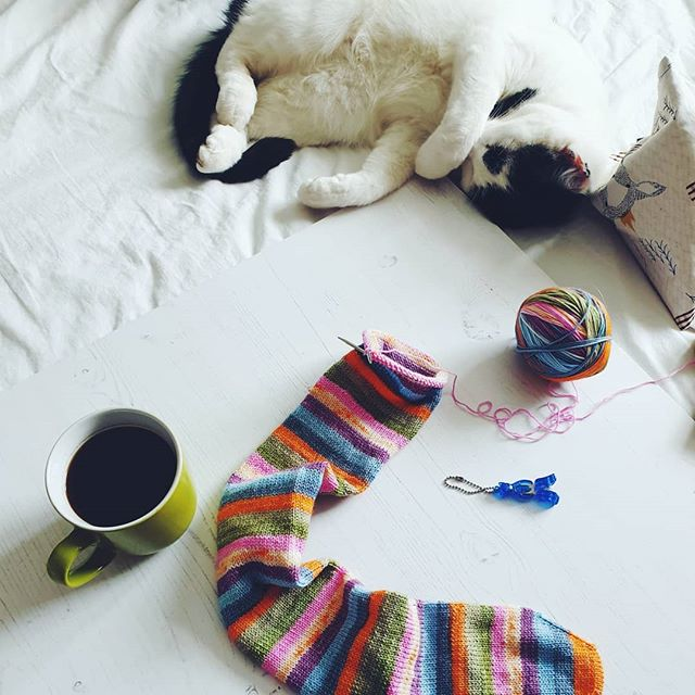 Creative Chats by Curly Carrot - Louise Tilbrook knitting socks