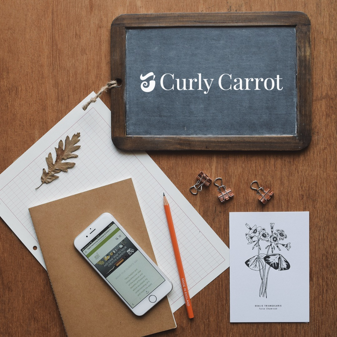 Pinterest management packages by Curly Carrot