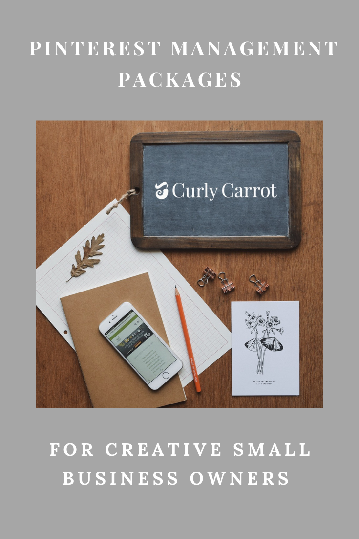 Pinterest Management packages for creative business owners by Curly Carrot